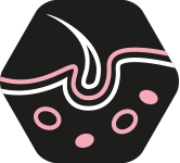 PURINA_PPD_ICON3_OPTIDERMA.png