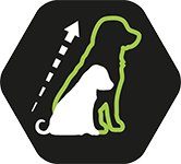 PURINA_PPD_ICON2_OPTISTART_LATH_PUP.png